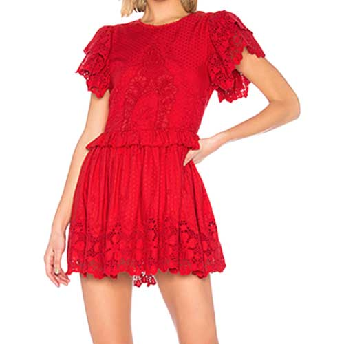 Valentine's Revolve dress